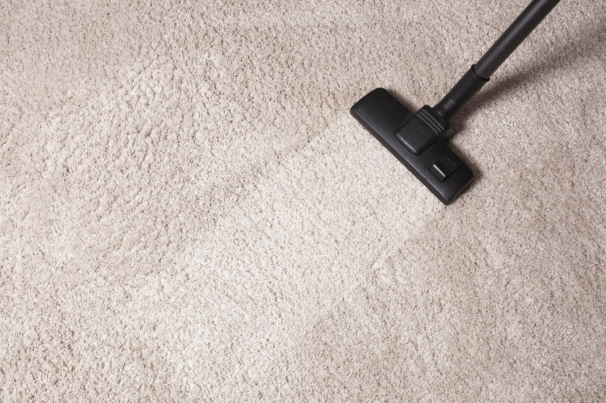 Image result for Carpet Cleaning Irvine""